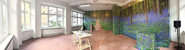 Screen saver forest wallpaper pasted in a gallery
