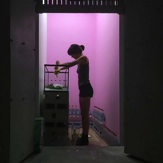 Lara Salmon performing in a pink colored space.