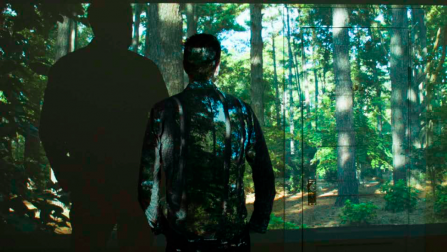 Still of Linda Post's video work PINE (2018) shows the silhouettes of persons transplanted digitally into the Texas pine woods.