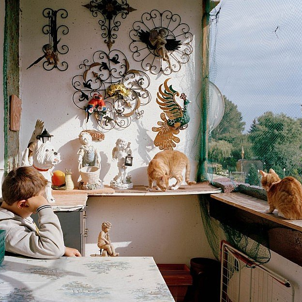 A boy rests his head on his arm sitting in a sunny, kitsch filled East-German balcony, accompanied by two cats..